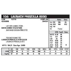 LAUBACH PRISCILLA 8090