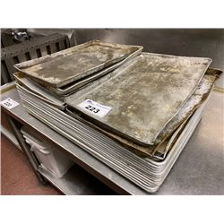 ASSORTED BAKING TRAYS & KNIVES