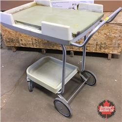 Two Tiered Rolling Cart