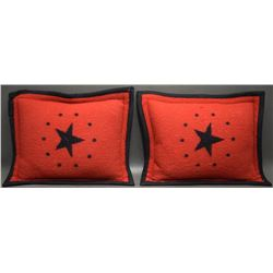TWO PENDLETON PILLOWS
