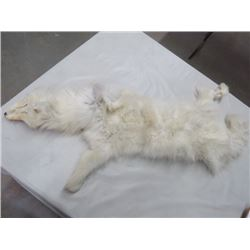 TANNED LONG WHITE FUR HIDE