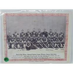 DETROIT RED WINGS NHL WINNERS PICTURE 1933 -34