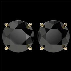4 CTW Fancy Black VS Diamond Solitaire Stud Earrings 10K Yellow Gold - REF-79X9T - 33136