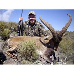 SPAIN BECEITE IBEX HUNT FOR ONE HUNTER AND ONE OBSERVER