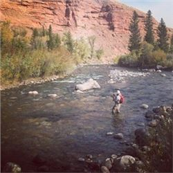Wyoming Secluded Getaway and Fish for Golden Trout with a new Wiked Fly Rod & Reel Co. Fly Fishing R