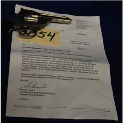 Antique Protector Handgun