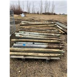 Approx. 153 Wooden Fence Posts