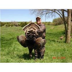 Nebraska Turkey Hunt for 1 Hunter