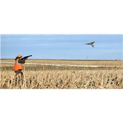3 Pheasant youth/Mentor Hunt