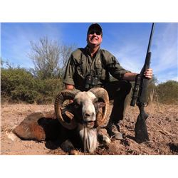 Big Game Hunt in Argentina for 2 Hunters
