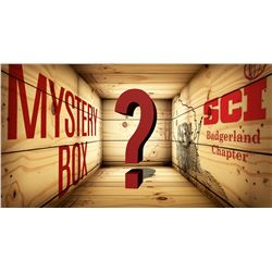 ???Mystery Box???