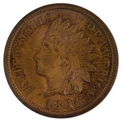 1891 Indian Cent Coin