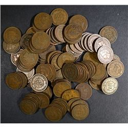 100 - 1900's INDIAN HEAD CENTS