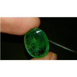 Natural Top Emerald 7.66 Carats - Certified