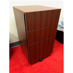 ROLLING STORAGE/FILE CABINET