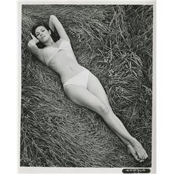 Raquel Welch bathing suit portrait photograph.