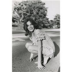 Jacqueline Bisset (3) oversize portrait photographs.