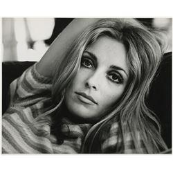 Sharon Tate (2) photographs by Alan Pappé.