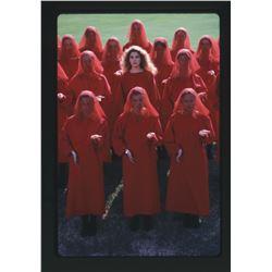 The Handmaid's Tale (20) color transparencies by Alan Pappé.