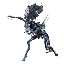 "Large ""Alien Queen"" xenomorph maquette from Aliens."