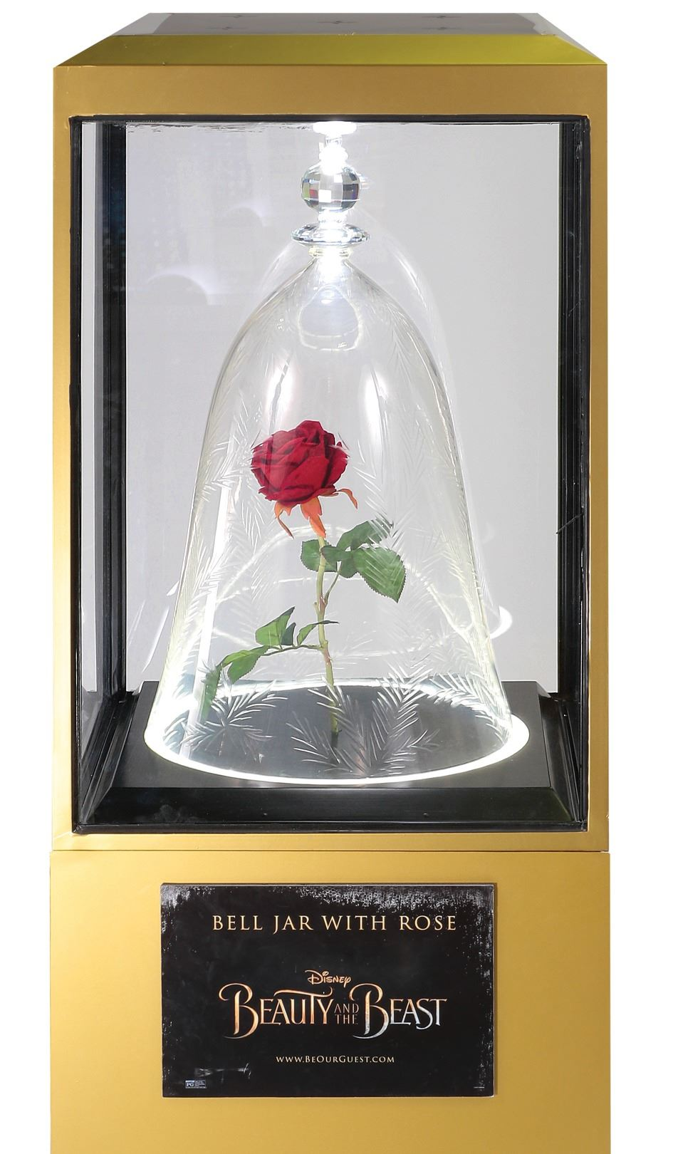 Beauty And The Beast Enchanted Rose Bell Jar