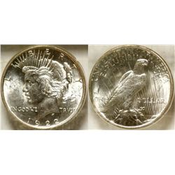 Peace Dollar in Plexiglass