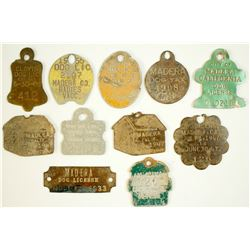 Dog Tag Collection