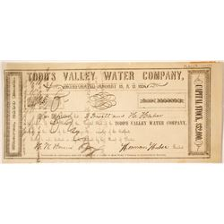 Todd's Valley Water Company Stock