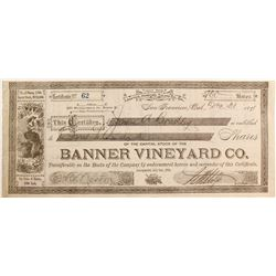 Banner Vineyard Co capital stock