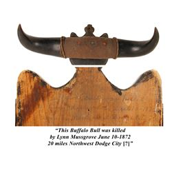 Buffalo Horn and Shield