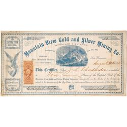 Mountain View Gold and Silver Mining Company stock