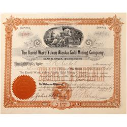 David Ward Yukon Alaska Gold Mining Co