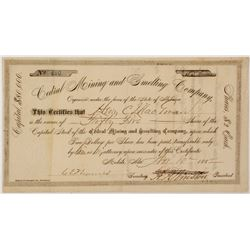 Cedral Mining & Smelting Company Stock Certificate 1