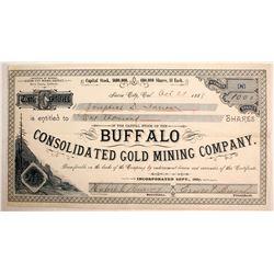 Buffalo Con Gold Mining Stock