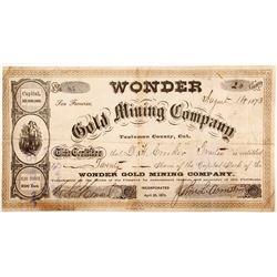 Wonder Gold Mining Stock