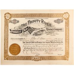 Trinity River Hydraulic Gold Mining Co. stock