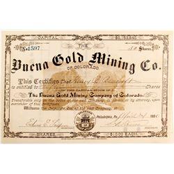 Buena Gold Mining Company Stock