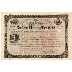 The Madeline Silver Mining Co. Stock Certificate, Texas Creek, CO, 1883
