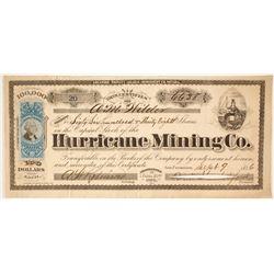 Hurricane Mining Company Stock