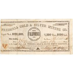 Fredonia Gold & Silver Mining Company Stock
