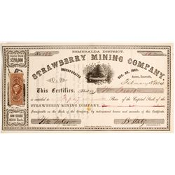 Strawberry Mining Company Stock - Aurora Dateline