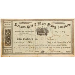 Brennus Gold & Silver Mining Company Stock