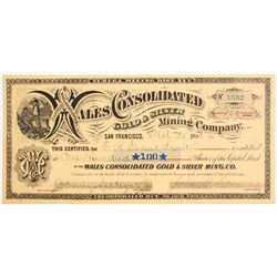 Wales Consolidated Gold & Silver Mining Co