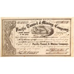 Pacific Tunnel & Mining Company Stock