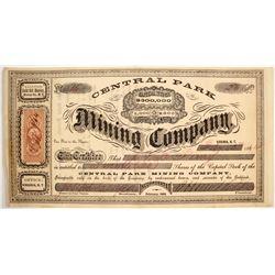Central Park Mining Company Stock
