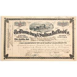 Bloomsburg & Sullivan Railroad Co.