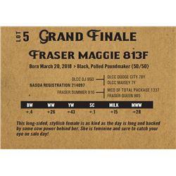 Fraser maggie 813f
