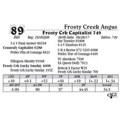 Lot 89 - Frosty Crk Capitalist 749
