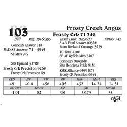 Lot 103 - Frosty Crk 71 742