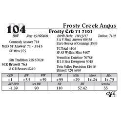 Lot 104 - Frosty Crk 71 7101